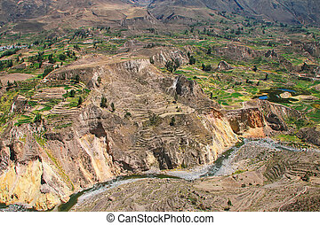 View of Colca Canyon in Peru. It is one of the deepest...