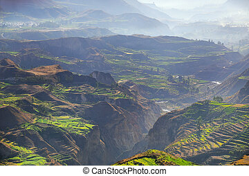Stepped terraces with morning fog in Colca Canyon, Peru. It...