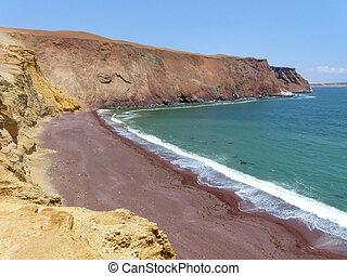 Roja Beach in Paracas National Reserve, Peru. Main purpose...