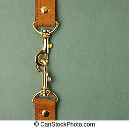 leather strap with carabiner on a green background