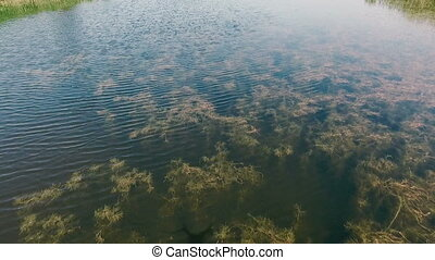 AERIAL: A small river. View from above. Flying drones. - A...
