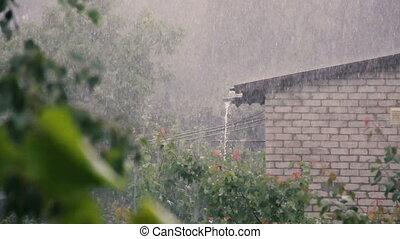 Falling rain on the roof of a house. Strong gusts of wind.