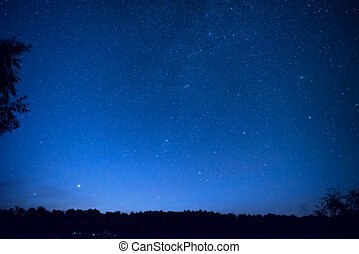 Beautiful blue night sky with many stars above the forest...