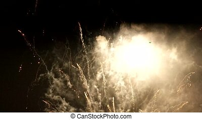 Multiple fireworks explosions on a dark night sky.