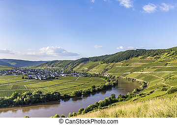 famous Moselle loop at Trittenheim, Germany