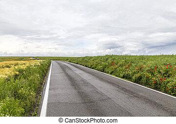 road in rural Eifel landscape with fields