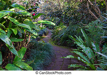 Bended path in a tropical garden - Bended path in tropical...