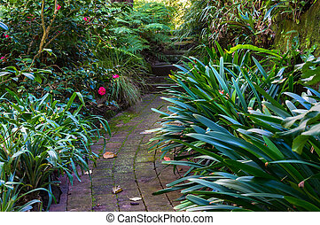 Bended path in tropical garden with camellia flowers on the...