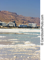 landscape of the Dead Sea, Israel - salt deposits, typical...