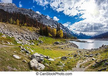 Fall in Jasper National Park, Canada