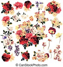 Big collection of vector high detailed rose flowers in watercolor style for design on white background.eps