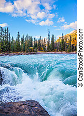 Powerful Athabasca Falls. Emerald water roars and foams on...