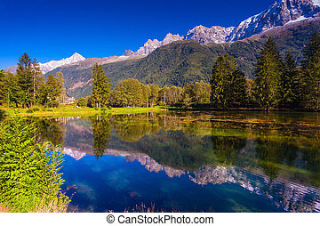 The snow-covered Alps and evergreen fir-trees are reflected...