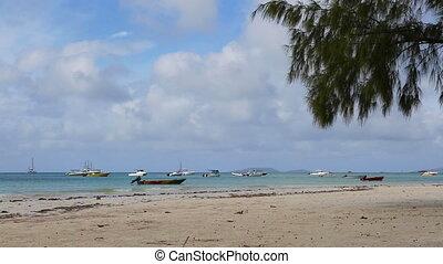 Tropical beach of Anse Volbert, Seychelles, summertime