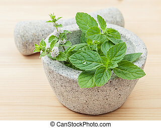 Closeup fresh peppermint leaves in the white mortar with...