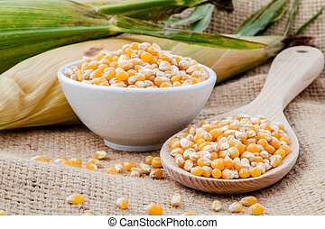 Grains of dried corn in the wooden spoon with dried sweet...