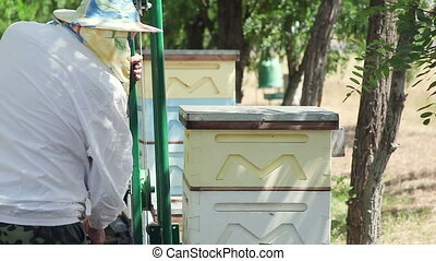 The work of the beekeeper. Rearrange the hive on an apiary....