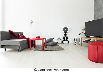 Bachelor apartment ideal for a music lover - Bright and airy...