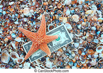 Starfish over two dollar banknote on coast covered with...