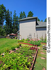 Small vegetable garden with risen beds in backyard near house.