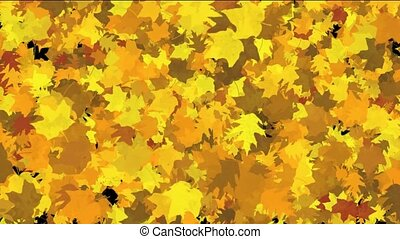 gold maple leaves dance background