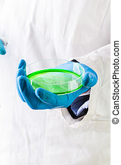 holding a petri dish with green liquid - a doctor or...