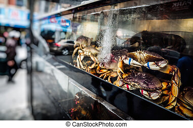 Chinatown, Manhattan, New York, United States - Crabs in the...