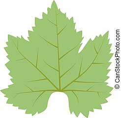Leave icon vector illustration. - Vector tropical leaves...