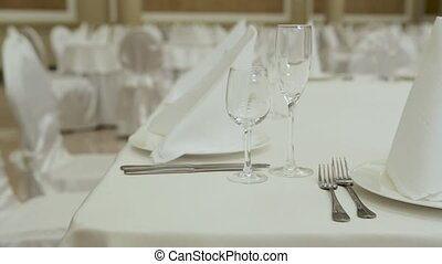 Table setting for great celebration close up. Horizontal pan...