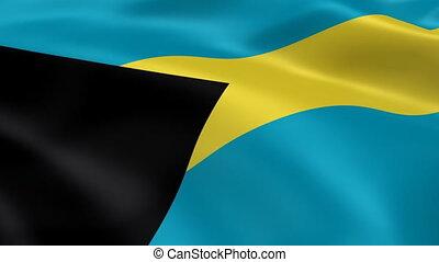Bahamian flag in the wind. Part of a series.