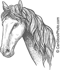 Racehorse of appaloosa breed sketch symbol - Purebred...