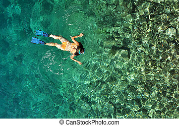 Young woman in swimsuit snorkeling in clear shallow tropical...