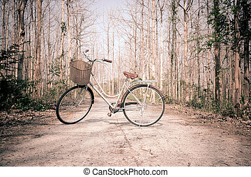 Beautiful vintage bicycle in the forest.