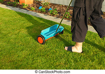 Gardening - fertilizing lawn - Gardening - fertilizer...