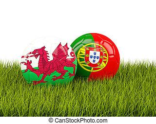 gales, y, portugal, futbol, pelotas, en, pasto o...