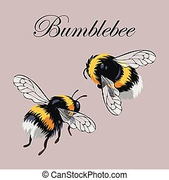 Set of bumblebees - Small vector set of cute and flying...