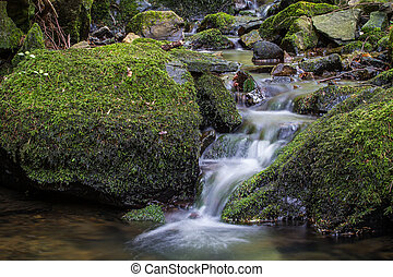 Water flowing over moss-covered rocks