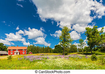 Typical swedish farmhouse in spring