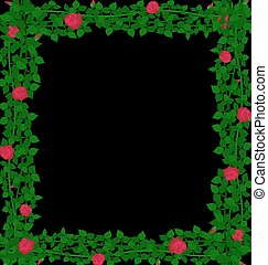 background red roses - black background with weave of red...