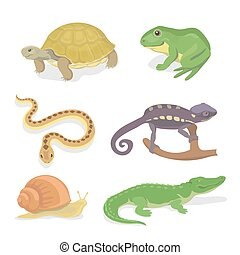 Reptiles and amphibians decorative set of crocodile turtle...