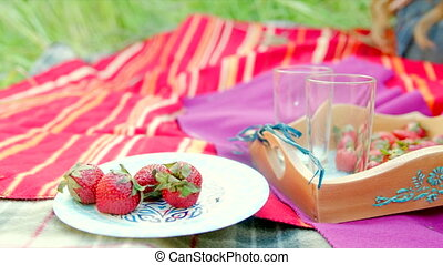 Summer picnic with straberry and milk on the blanket