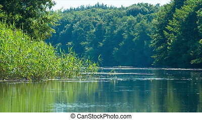 Summer landscape with calm river on lowland, static...