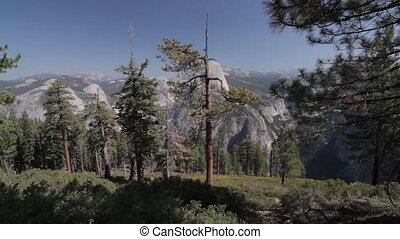 Half Dome Scenic Point, Yosemite Nationalpark, United States