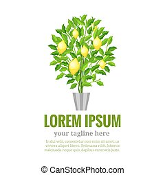 Lemon tree. Citrus tree. Garden fruit. Flat style.Vector...
