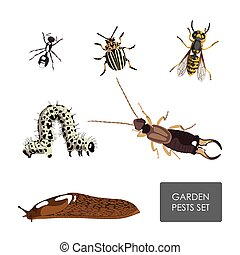 Set of garden pests on a white background