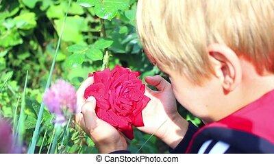 a child admires a flower in the garden