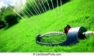 Lawn sprinkler spaying water over green grass. Collection. -...