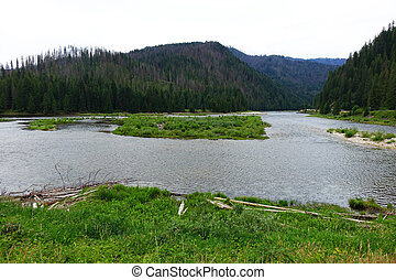 Confluence of Rivers - Idaho - Confluence of the Selway and...
