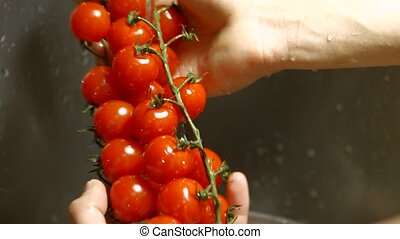 Male hands washing tomatoes. Red tomatoes on a branch. Ripe...