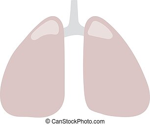 Lungs icon vector illustration - Human lungs icon vector...